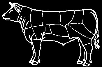 tracer vache